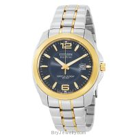 Citizen Men's BL1224-55L Eco Drive Two-Tone Watch